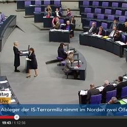Plenardebatte zu Russland nach der Ermordung von Boris Njemzo